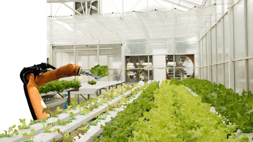 IoT can do a lot for food and agriculture.